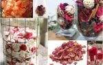 Что делать с лепестками роз?