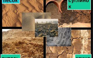 Чем отличается песок от глины