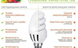 Чем отличается лампа накаливания от лампы люминесцентной