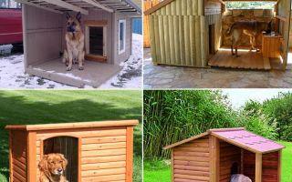 Как сделать будку для собаки?